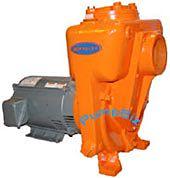 Berkeley B4ZPKS B54636 Centrifugal Self-Priming Pump