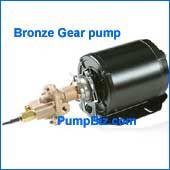 Hypro GCBN33V Bronze Gear pump 1/2 hp