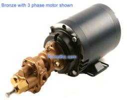 Bronze Gear pump 1HP
