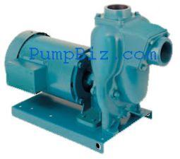 MP 38481 FM15 Pump FM 15 w/ motor