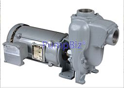 MP petroleum pump with explosion proof motor
