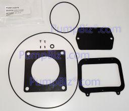 amt gasket oring Kit IPT 399c-300-91