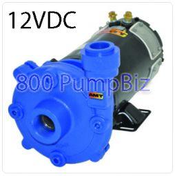 AMT - 489G-95: 12 Volt DC Washdown Pump