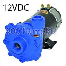 AMT 489G-98 12DC-98 12 Volt DC Washdown Pump stainless