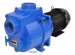 amt 394g-95 pump