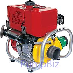 Darley 2BE6.5HCG Portable Fire Pumps 6.5 HP Coast Guard