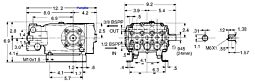 TriPlex Plunger Pump 6.5hp