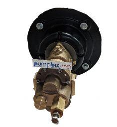 Hypro GMBN6VA Rotary Gear pump only sherflo shertech motor mount