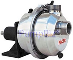 Pacer IPW2WL-CSS Stainless Self Priming Pump NSF