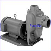 MP 24389 FM 10 w/ 5HP Motor