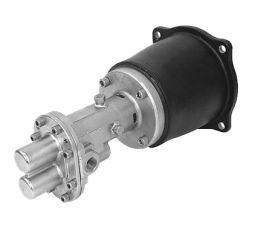 316SS Gear pump