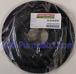 Riverside - 03439: Diaphragm pump repair kit
