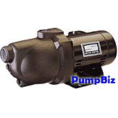 Sta-Rite PNE-10 1 hp Well Jet pump