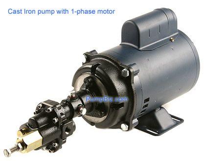 Hypro GMCV2VA3 Cast Iron Gear pump 1/4